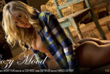 Cozy Mood – Zoey Taylor